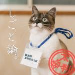 https://3100.work/?cat=331